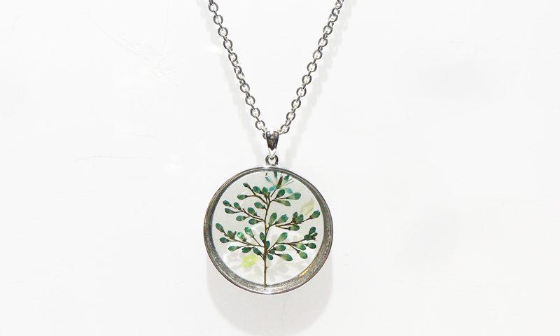 Botanigem The Tree of Life Day