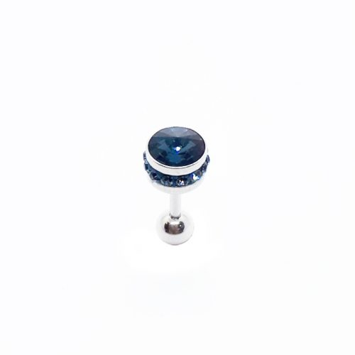Stainless Steel SW Blue Crystal Earring