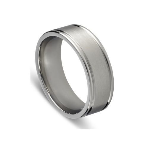 Stainless Steel Matte Polished Ring